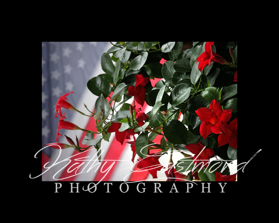 """""""July Fourth"""" 5x7 print mounted on a black 8x10 acid-free matte for $20 with free shipping within the U.S.  (Kathy Eastmond's signature will replace the copyright  logo )"""