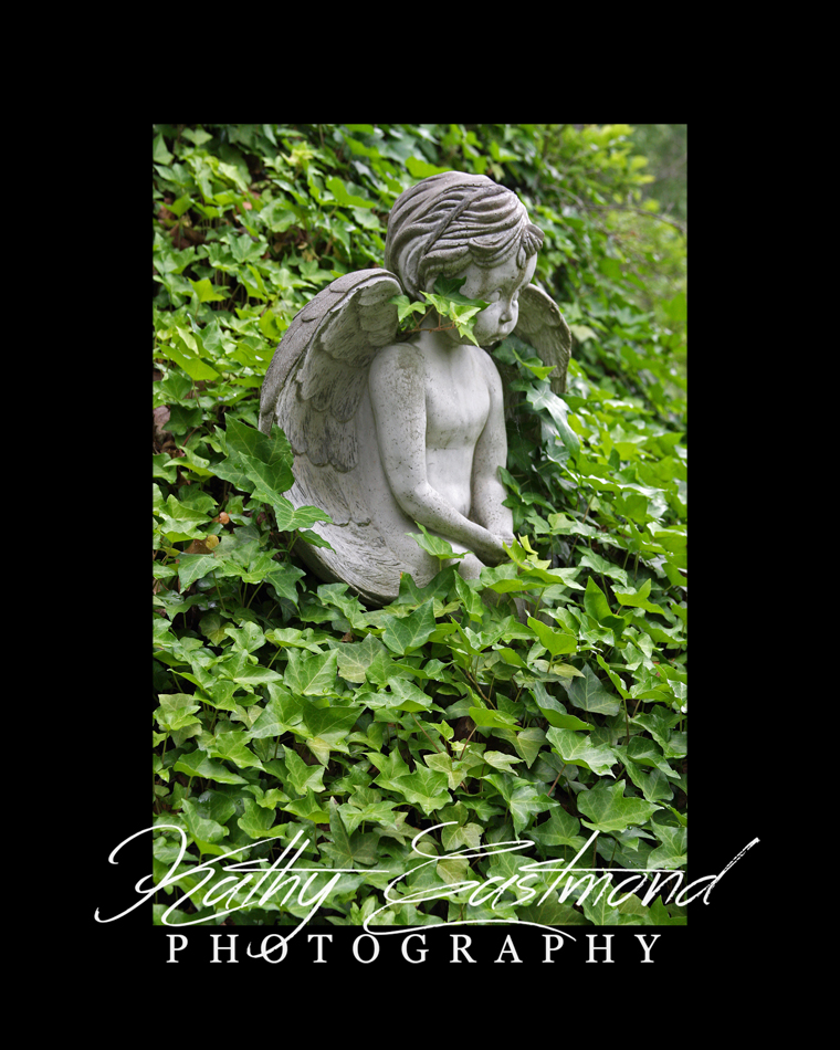 """Angel in Ivy"" 5x7 print mounted on a black 8x10 acid-free matte for $20 with free shipping within the U.S.  (Kathy Eastmond's signature will replace the copyright logo)"