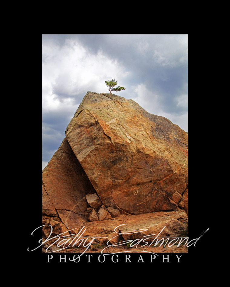"""Founded on the Rock"" 5x7 print mounted on a black 8x10 acid-free matte for $20 with free shipping within the U.S.  (Kathy Eastmond's signature will replace the copyright  logo )"