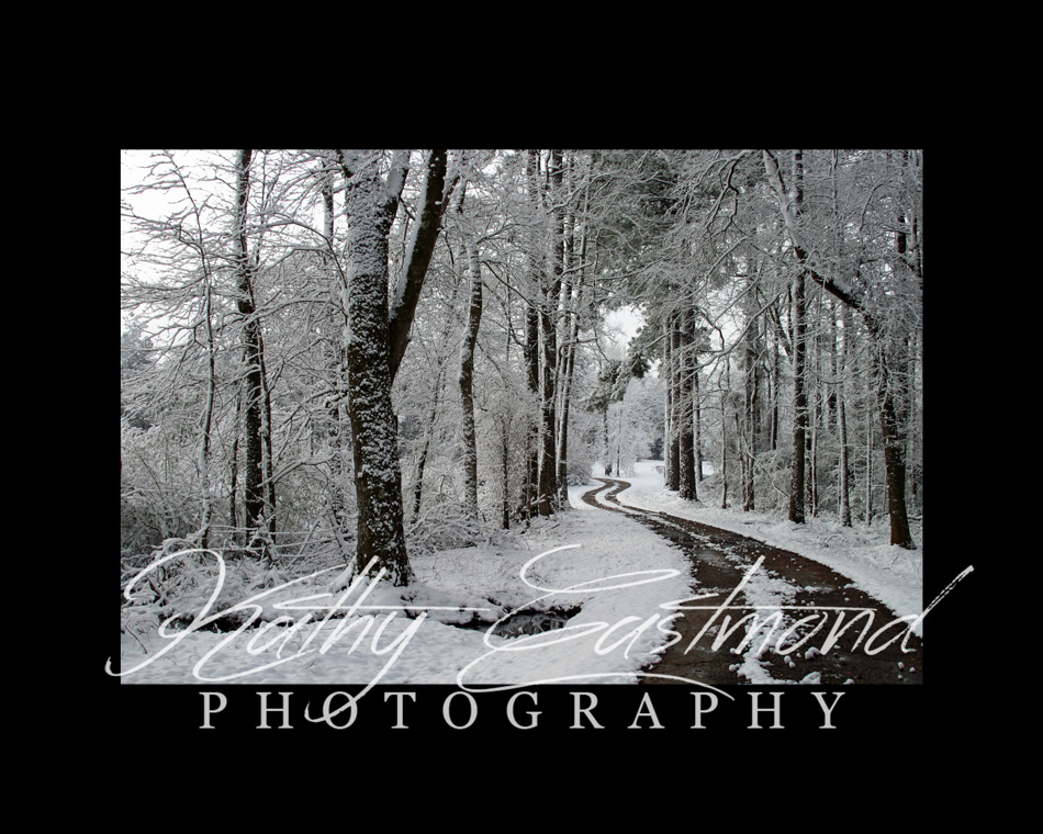 """Snow at Home"" 5x7 print mounted on a black 8x10 acid-free matte for $20 with free shipping within the U.S.  (Kathy Eastmond's signature will replace the copyright  logo )"