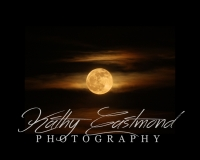 """Golden Moon"" 5x7 print mounted on a black 8x10 acid-free matte for $20 with free shipping within the U.S.  (Kathy Eastmond's signature will replace the copyright  logo )"