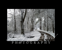 """""""Snow at Home"""" 5x7 print mounted on a black 8x10 acid-free matte for $20 with free shipping within the U.S.  (Kathy Eastmond's signature will replace the copyright  logo )"""